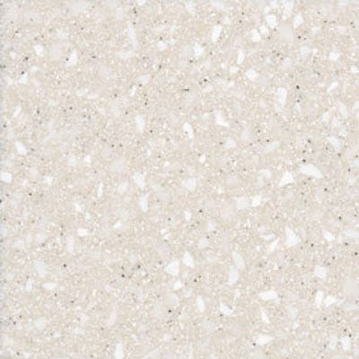 Chesapeake Shell Xpressions, Formica